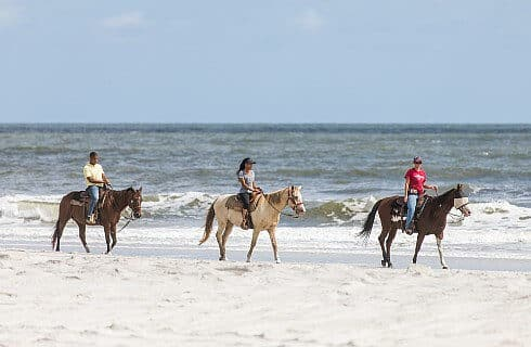 Three people riding horses on the beach next to the shore